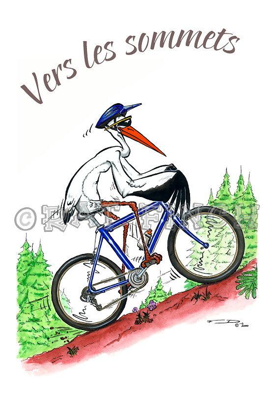 Cigogne VTTiste